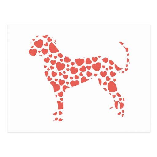 Perro del leopardo de Catahoula Postal