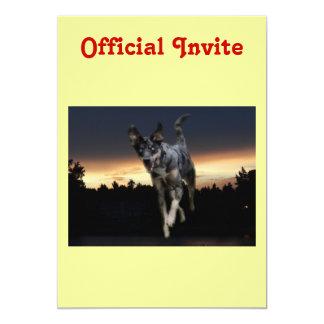 """Perro del leopardo de Catahoula que corre en Invitación 5"""" X 7"""""""