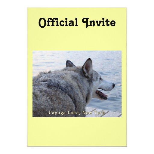 """Perro del lobo del lago Cayuga Invitación 5"""" X 7"""""""