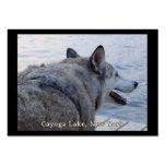 Perro del lobo del lago Cayuga Tarjetas De Visita Grandes