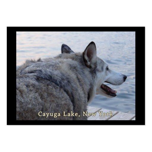 Perro del lobo del lago Cayuga Tarjetas Personales