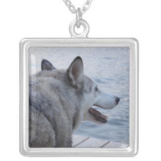 Perro del lobo en el lago NY Cayuga Collar Plateado
