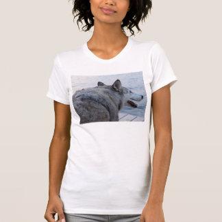 Perro del lobo en el lago NY Cayuga Remera