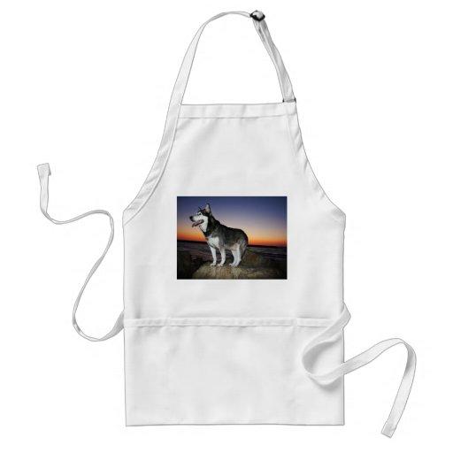 Perro del Malamute de Alaska en la puesta del sol Delantales