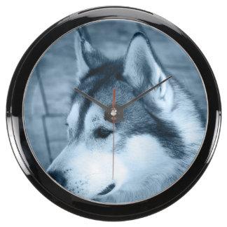Perro del Malamute de Alaska Reloj Acuario