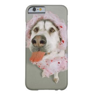 Perro del Malamute que lleva un tutú y que se pega Funda De iPhone 6 Barely There