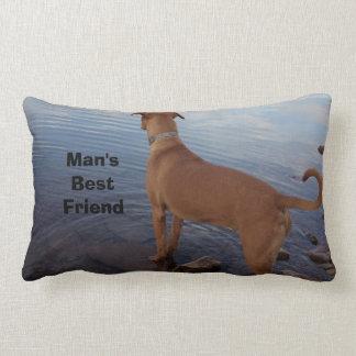 Perro del mejor amigo del hombre que mira hacia fu almohada