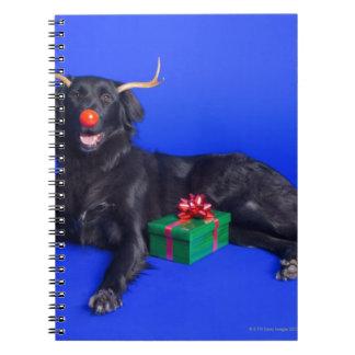 Perro del navidad libro de apuntes
