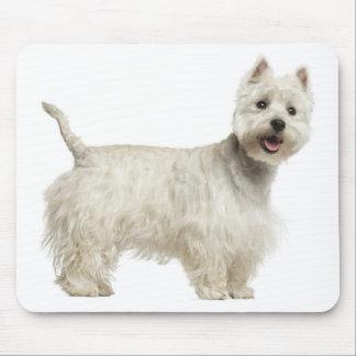Perro del oeste blanco Mousepad de Terrier de la Alfombrillas De Raton