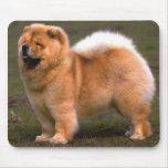 Perro del perro chino de perro chino alfombrilla de raton