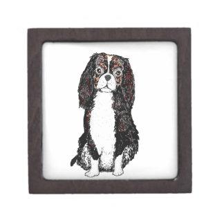 Perro del perro de aguas cajas de joyas de calidad