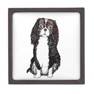 Perro del perro de aguas cajas de recuerdo de calidad