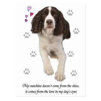 Perro del perro de aguas de saltador inglés tarjeta postal