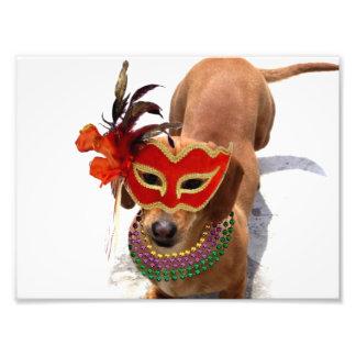 Perro del perro de patas muy cortas del carnaval impresión fotográfica