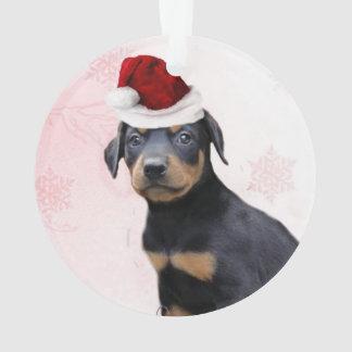 Perro del Pinscher del Doberman del navidad