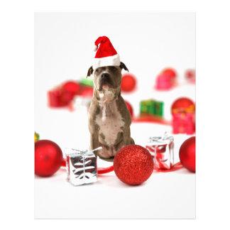 Perro del pitbull con la caja de regalo y los plantilla de membrete