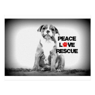 Perro del rescate del amor de la paz postales