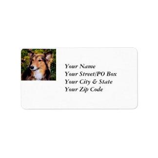 perro del rescate etiquetas de dirección