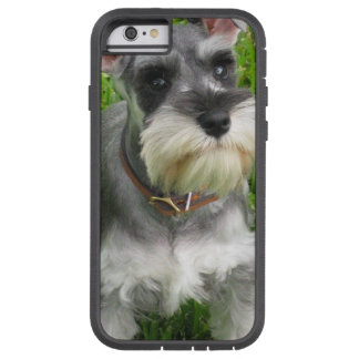 Perro del Schnauzer Funda Para iPhone 6 Tough Xtreme