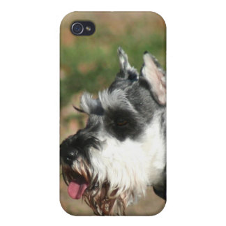 Perro del Schnauzer iPhone 4/4S Carcasa