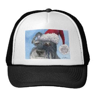 Perro del Schnauzer que lleva el gorra de Santa