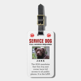 Perro del servicio - insignia requerida acceso com etiquetas para maletas