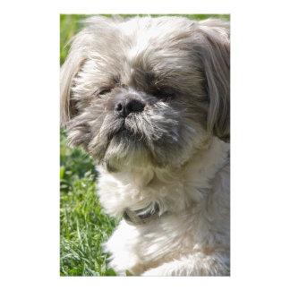perro del tzu de shih papeleria de diseño