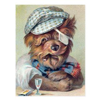 "Perro del vintage ""del viejo bribón"" tarjeta postal"