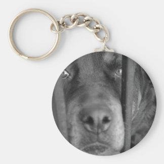 Perro detrás de barras llavero personalizado