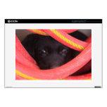 Perro detrás de la foto de Waterhose Calcomanía Para 38,1cm Portátil