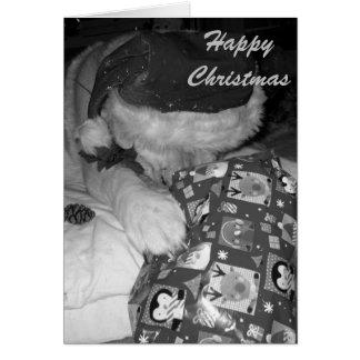 perro divertido de Akita con navidad del regalo Tarjeta De Felicitación