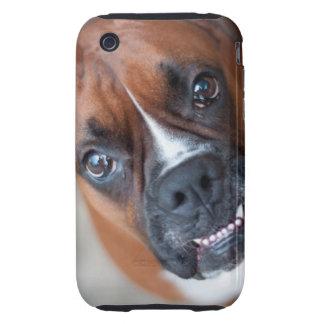 Perro divertido del boxeador iPhone 3 tough carcasas