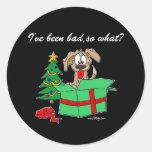 ¿Perro divertido del navidad he sido malo, tan Pegatina Redonda