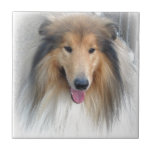 Perro dulce azulejo