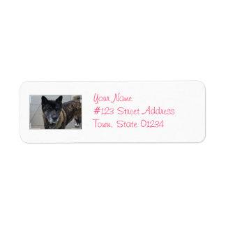 Perro dulce de Akita Etiquetas De Remite