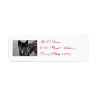 Perro dulce de Akita Etiqueta De Remite