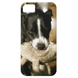 Perro dulce de la raza del matón del mascota del funda para iPhone SE/5/5s