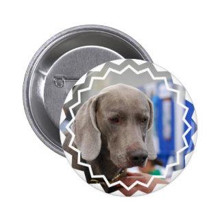 Perro dulce de Weimaraner Pins
