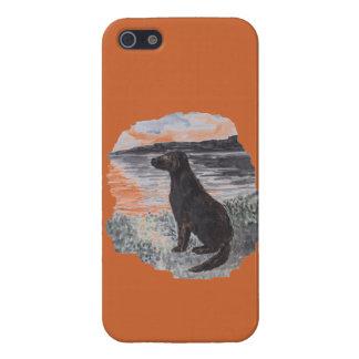 Perro e iPhone de Skinit del paisaje marino 5 caja iPhone 5 Carcasa