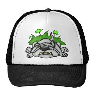 Perro el dormir gorras