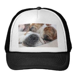 Perro el dormir gorros bordados