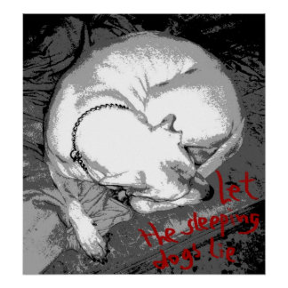Perro el dormir (poster)