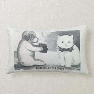 Perro elegante que toma una foto de un gato gruñón almohada