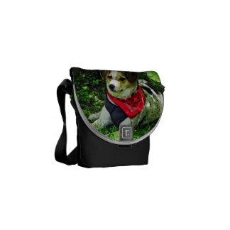Perro en bufanda roja bolsas messenger