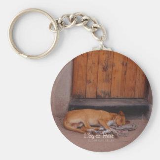 Perro en descanso llavero redondo tipo pin