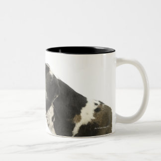 Perro en el blanco 11 taza de dos tonos