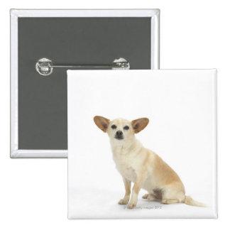 Perro en el blanco 13 pin cuadrado