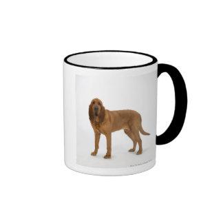 Perro en el blanco 97 taza de dos colores