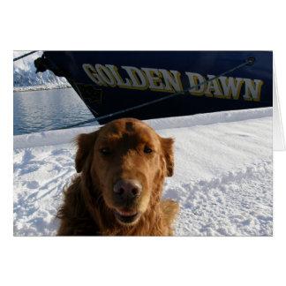 Perro en el muelle en el puerto holandés, Alaska Felicitacion