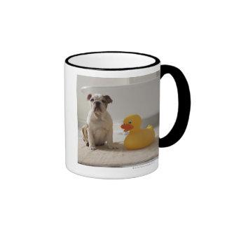 Perro en la estera con el pato plástico taza